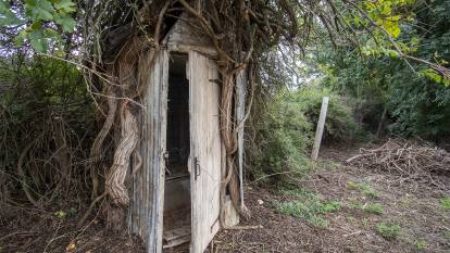 "The ""Whomping Willow"" outhouse at Dunolly. Pictures: SUPPLIED"